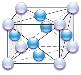 Schematic shows the multiple atomic force interactions between the 14 atoms
